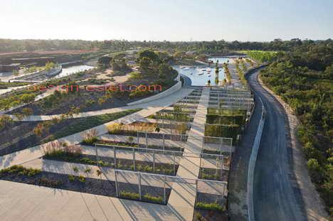 Дорожки в садово-парковом ландшафте австралийского сада