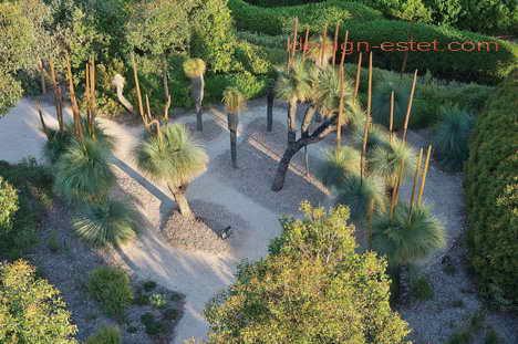 Деревья в дизайне ботанического сада в Австралии