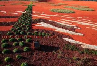 Необычный дизайн песчано-каменистого сада в Австралии