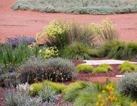 Цветы и злаки в дизайне ботанического сада в Австралии