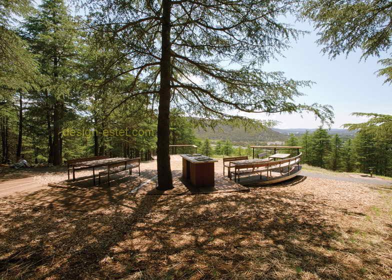 Видовые площадки в дизайне ландшафтного парка