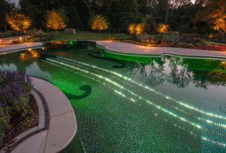 Необычный бассейн в форме скрипки