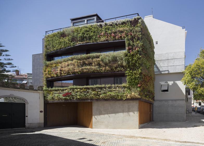 Вертикальное озеленение городских зданий и сооружений