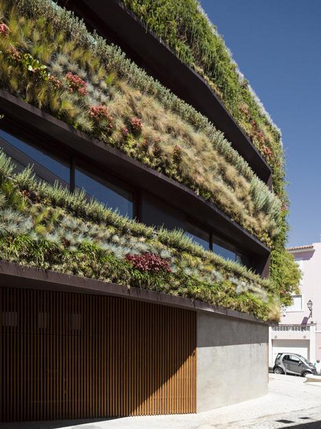 Фото вертикального озеленения фасадов зданий в городе